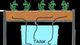 Các loại hệ thống thủy canh bạn nên biết?