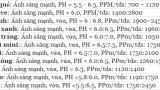 Bảng pmm tiêu chuẩn cho từng loại rau củ quả – nồng độ dinh dưỡng trồng thủy canh